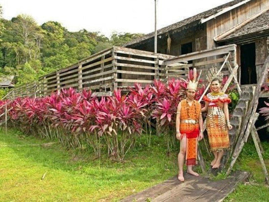 Natives with traditional clothing at stairs to longhouse in Sarawak