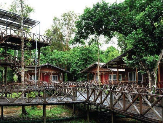 Rainforest lodges at Sandakan