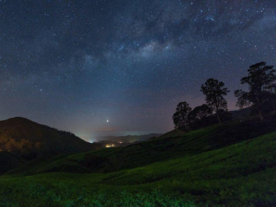 Starry night viewed at night on Cameron Highlands