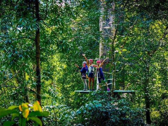 Visitors preparing to zipline through the forest of Langkawi