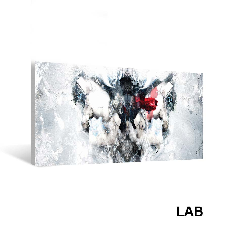 Luc Langlois - Cryogenic Rorschach  - Impressions sur Toile - Canvas Prints - Live Art Business - LAB