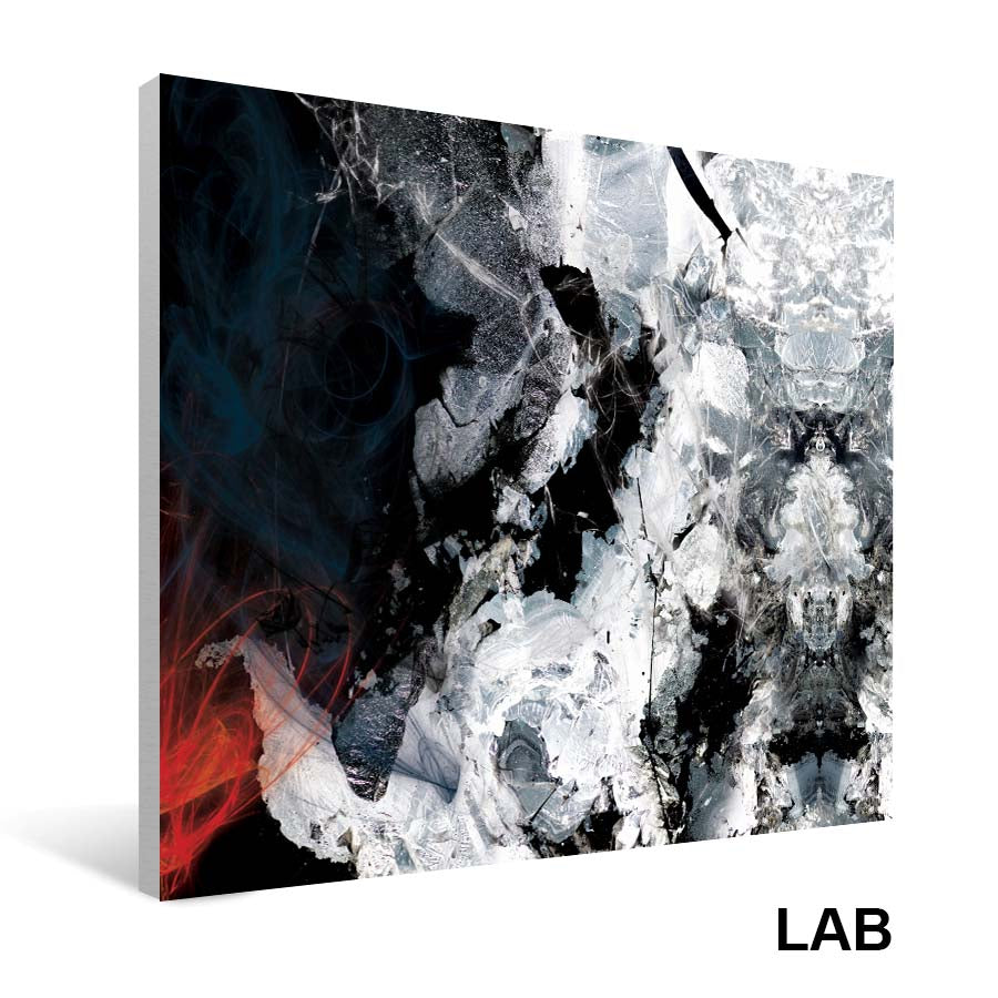 Luc Langlois - Felix Leclerc  - Impressions sur Toile - Canvas Prints - Live Art Business - LAB