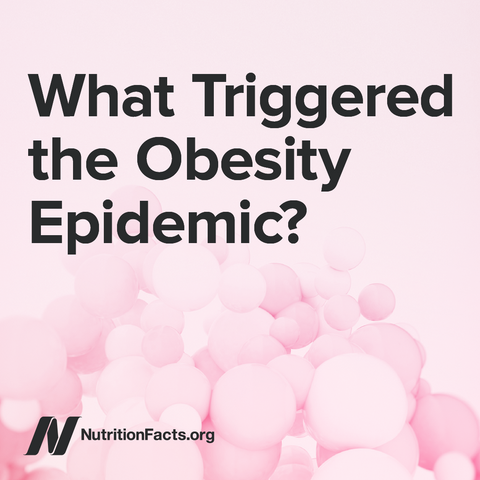 What Triggered the Obesity Epidemic? [Digital Download]