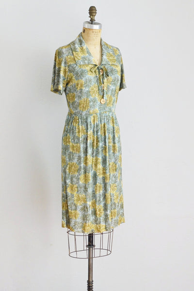 Printed Rayon Jersey Dress - Pickled Vintage