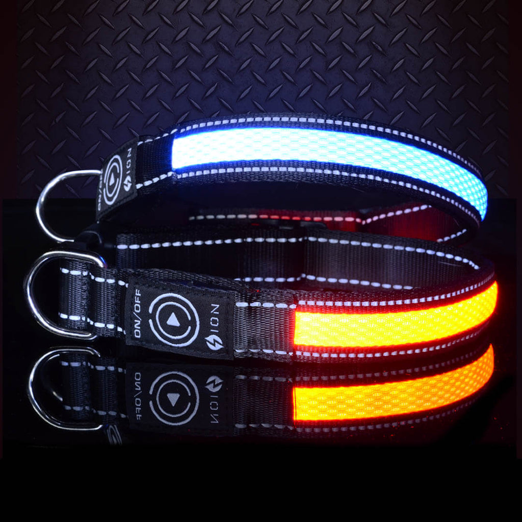 light-up-pet-collar