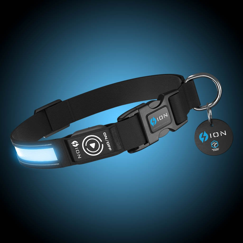 led-dog-collar