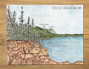 Otter Cliff Acadia National Park Watercolor Vinyl Sticker