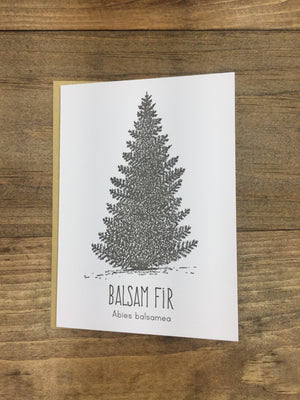 Balsam Fir Letterpress Card