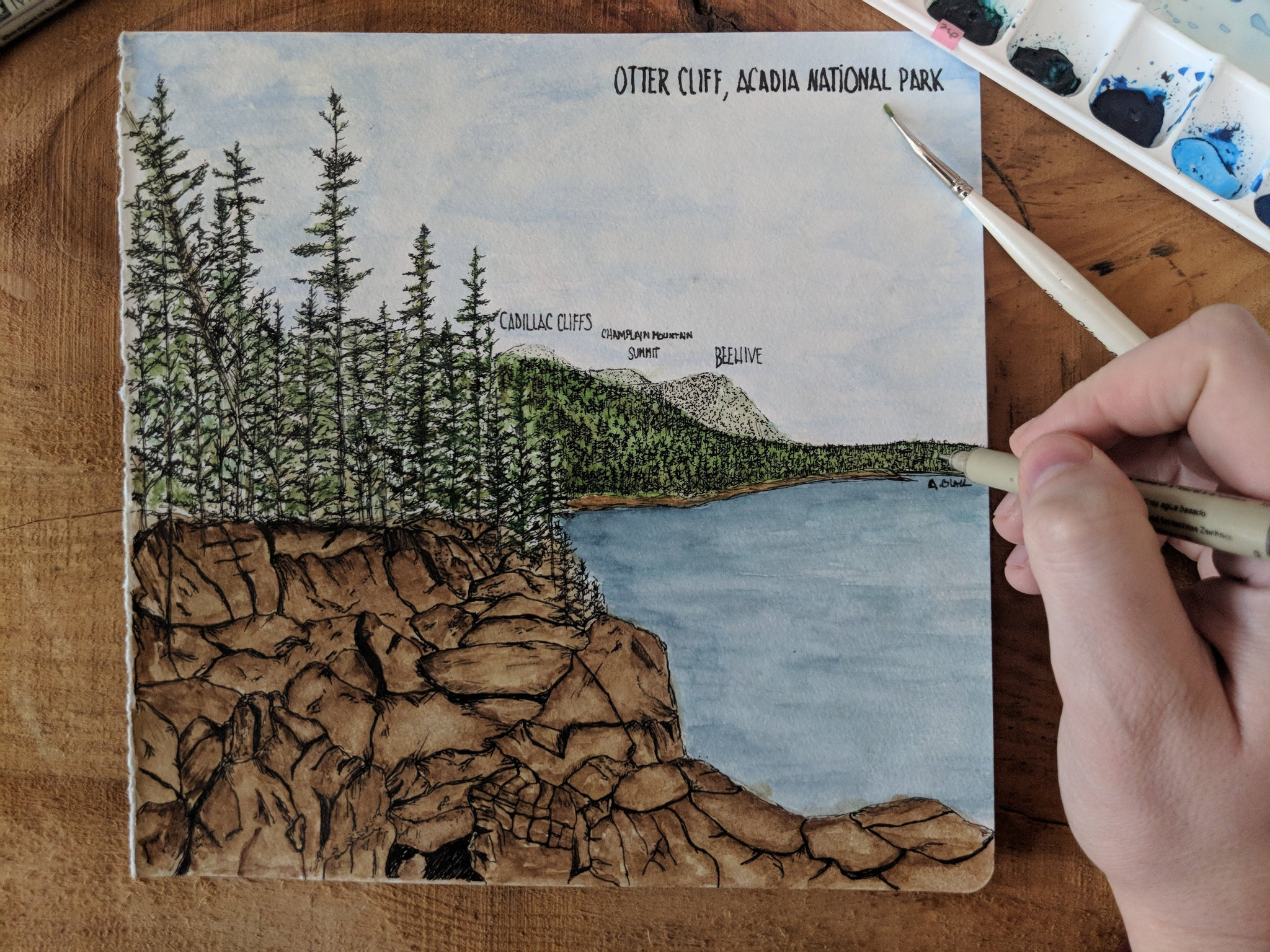 Original Otter Cliff Watercolor Illustration