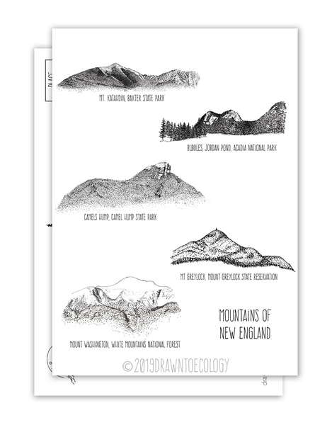 Mountains of New England Postcard Pack