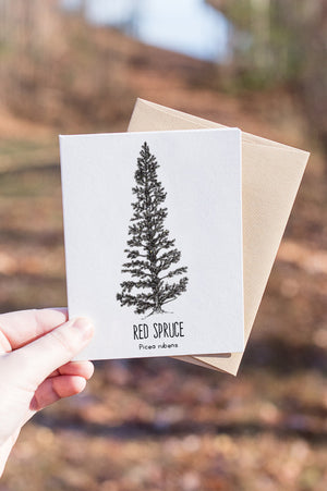 Red Spruce Letterpress Card