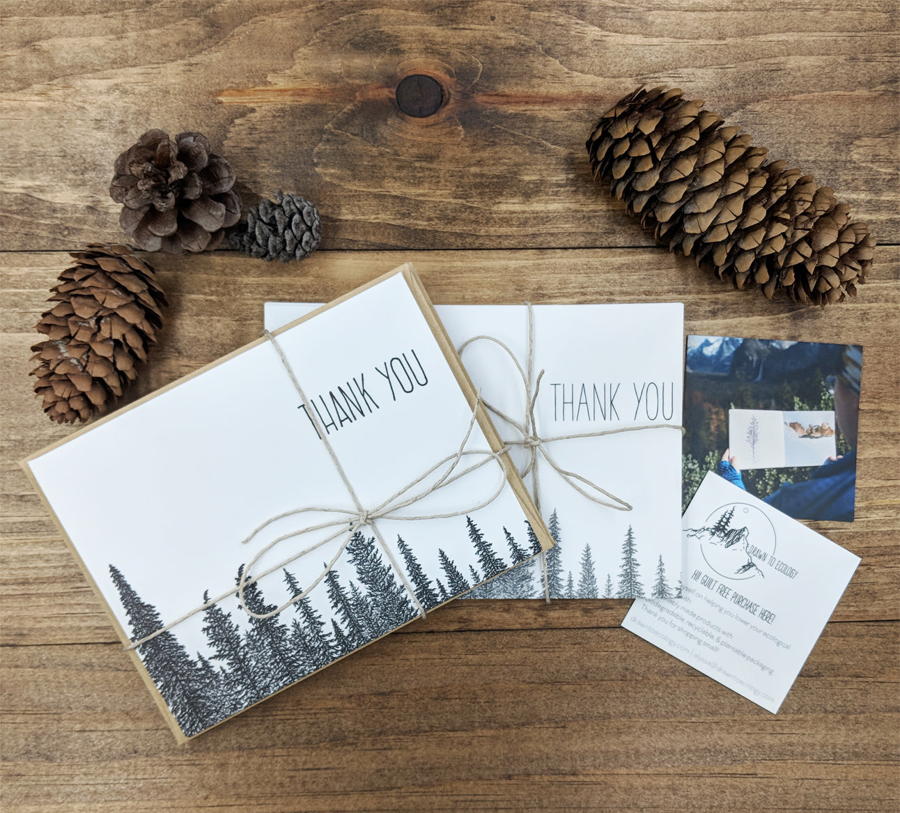 Thank You Card Pack Drawn To Ecology