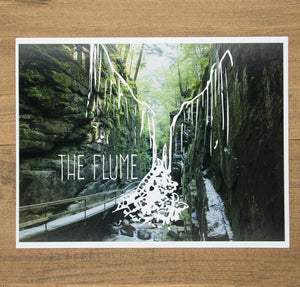 Ecology of a Place, The Flume