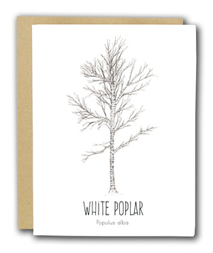 White Poplar Letterpress Card