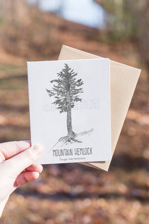 Mountain Hemlock Letterpress Card