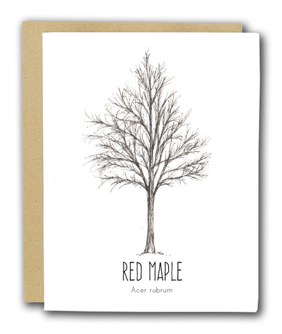 Red Maple Letterpress Card