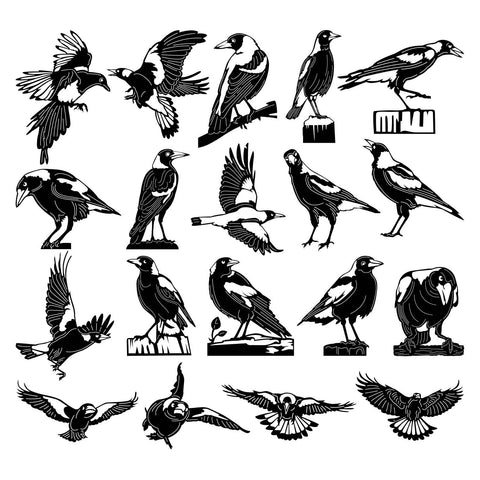 Australian Magpies Birds-DXF files Cut Ready for CNC-DXFforCNC.com