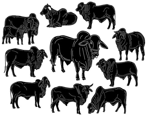 Bull Brahman Cattle-DXF files Cut Ready for CNC-DXFforCNC.com