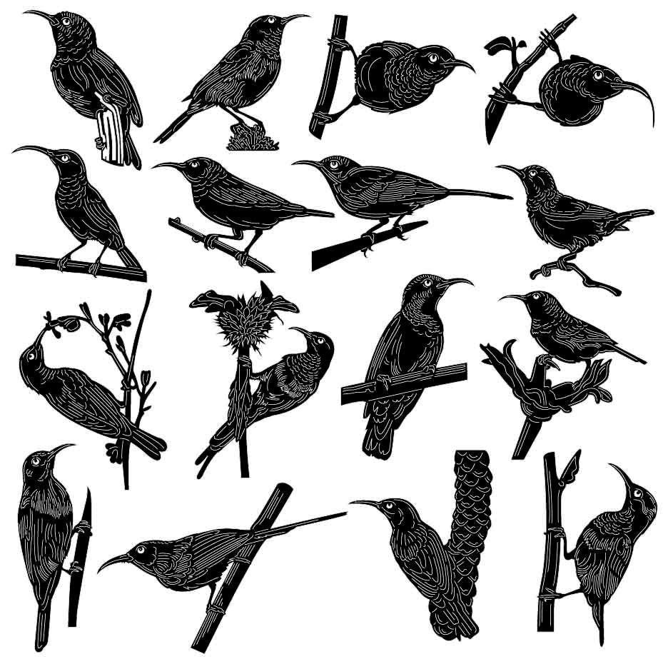 Sunbirds and Spiderhunters Bird-DXF files Cut Ready for CNC-DXFforCNC.com