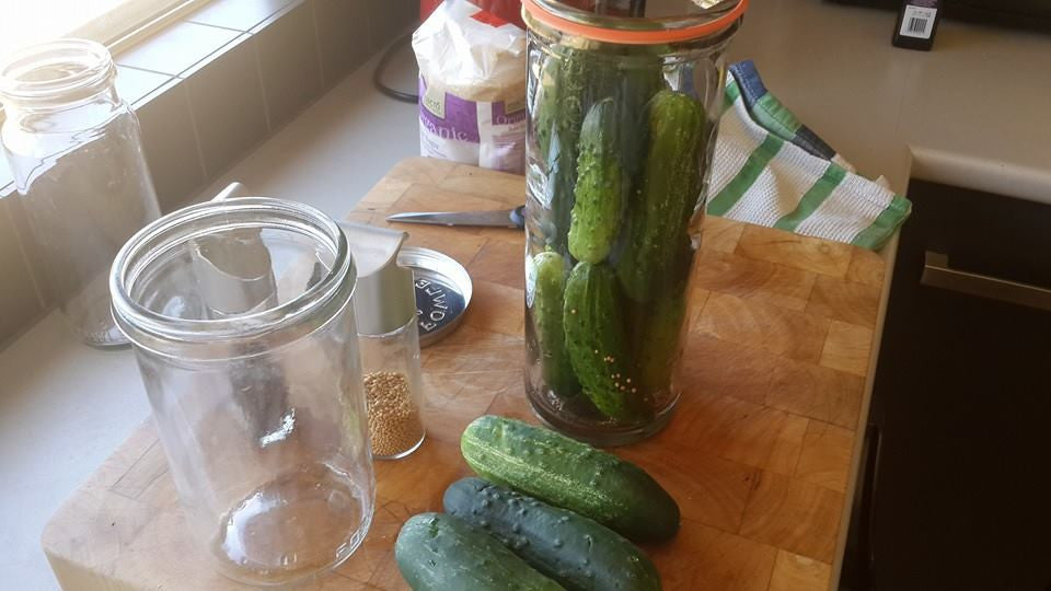 Fermented Foods – Why are they all urban hippy cool now?!