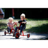 Winther Mini Viking Low Tricycle with Plate