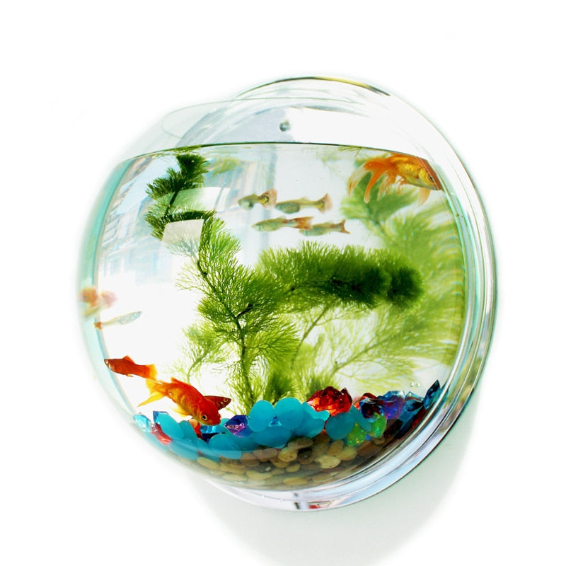 Wall-Hanging Fish Bowl Acrylic Wall-Mounted Plant Pot Wall Mounted Acrylic Fish Bowl Creative Acrylic Hanging Wall Mount 1 Gallon Fish Tank Bowl Aquarium Plant Pot Fish Bubble Aquarium