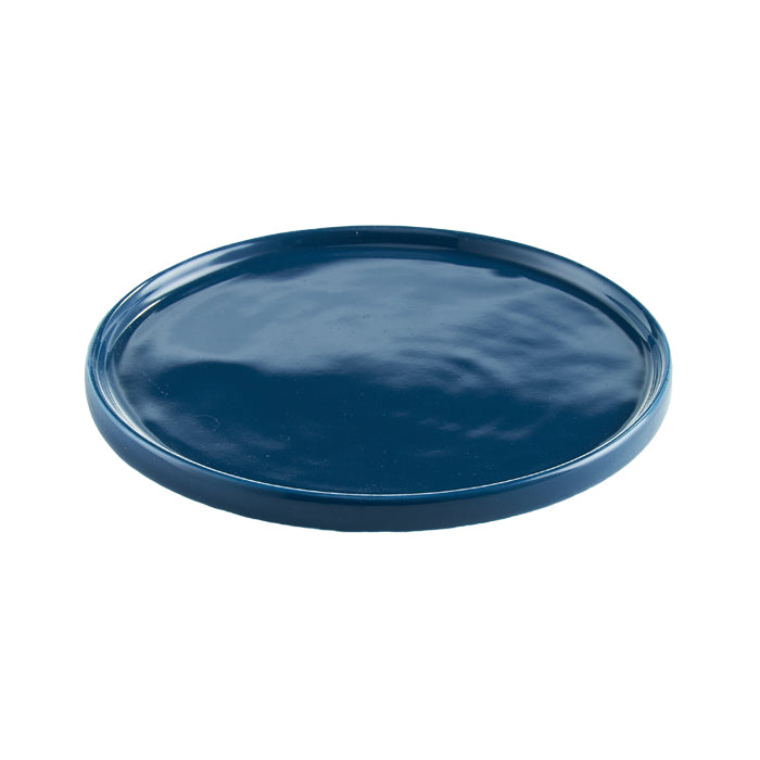 Blue Ingredient Plate