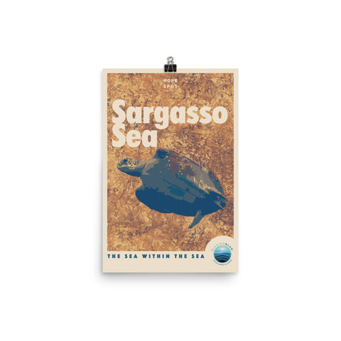 Sargasso Sea Hope Spot Poster