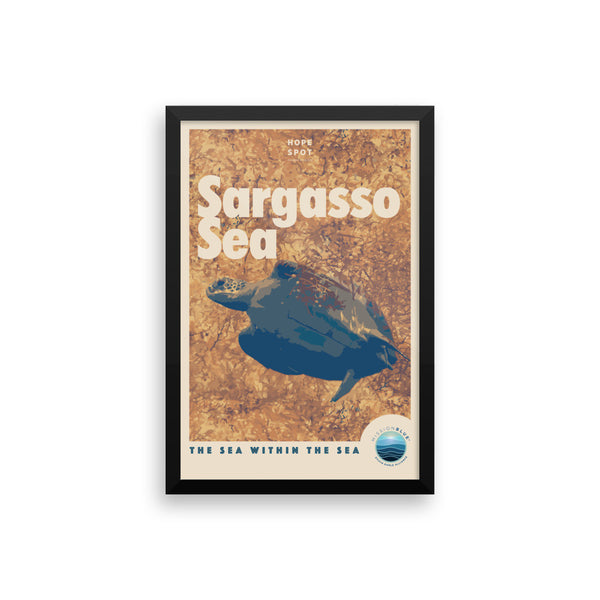 Sargasso Sea Hope Spot Poster – Framed