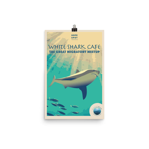 White Shark Café Hope Spot Poster