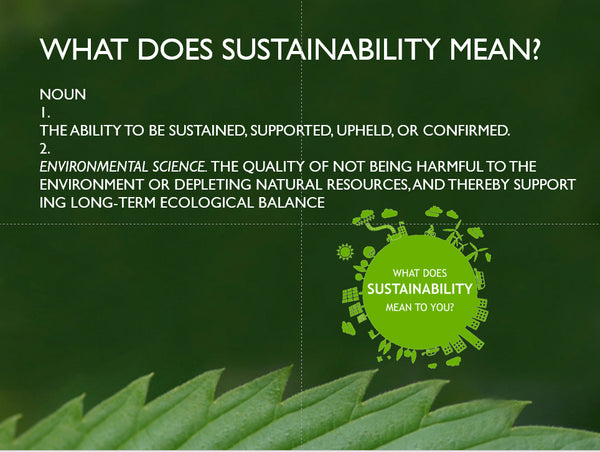 Sustainable Definition