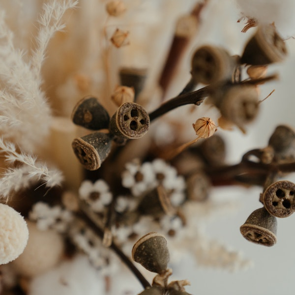 Style Your Home With Dried Flowers