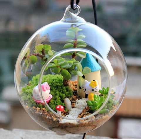 terrarium-gift-womens-day