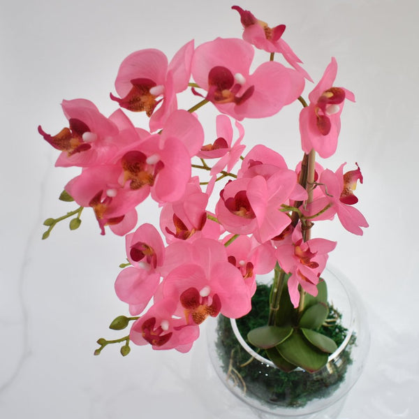Orchid plant - artificial -  Decors - The Flower Station