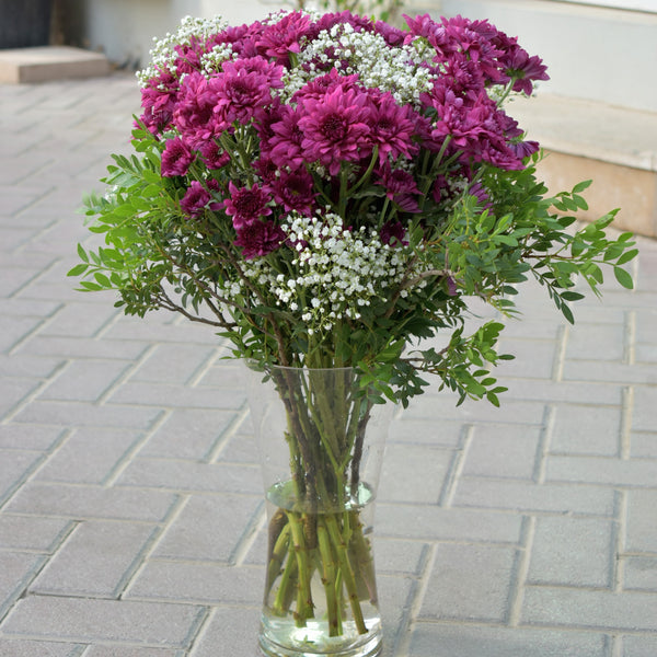 Cute Chrysanthemum -  Flower Gift  by Flower Station Dubai