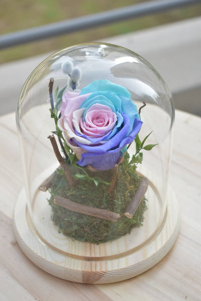 Cotton Candy - Forever Rose -  Flower Delivery - Flower Station Dubai