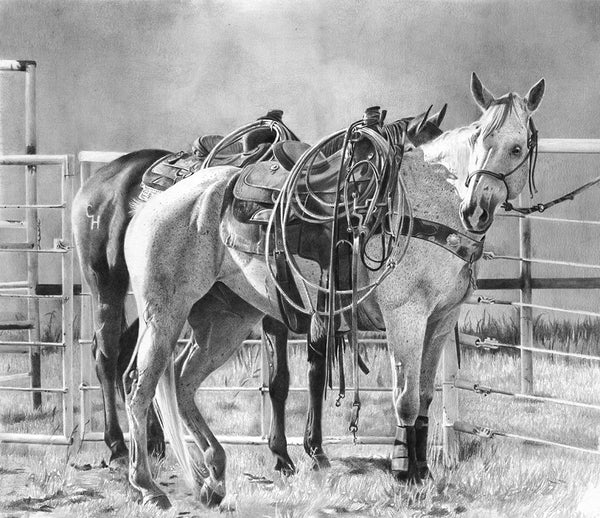 Equine Art Prints