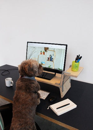 Dachshund Stand - DS - Modos Furniture