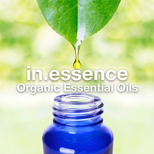 in.essence: Coming soon! Add in ZING with these organic essential oils.
