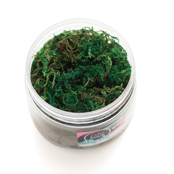 Color Pour Resin Mix-Ins Moss .14oz
