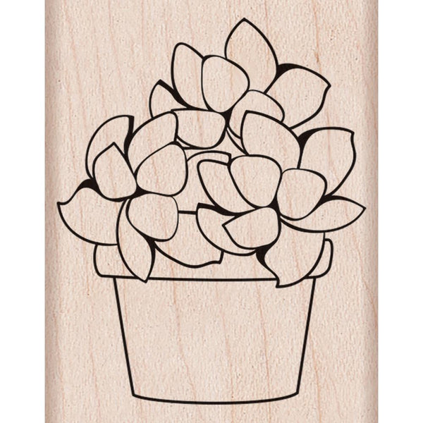 Small Potted Succulent Hero Arts Mounted Rubber Stamp