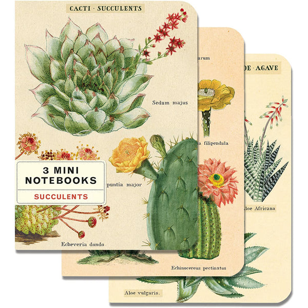 Cavallini & Co. Mini Notebook Sets Succulents 3/Pkg