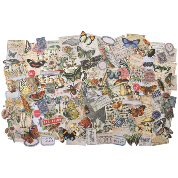 Field Notes Idea-Ology Ephemera Pack Tim Holtz 134pcs