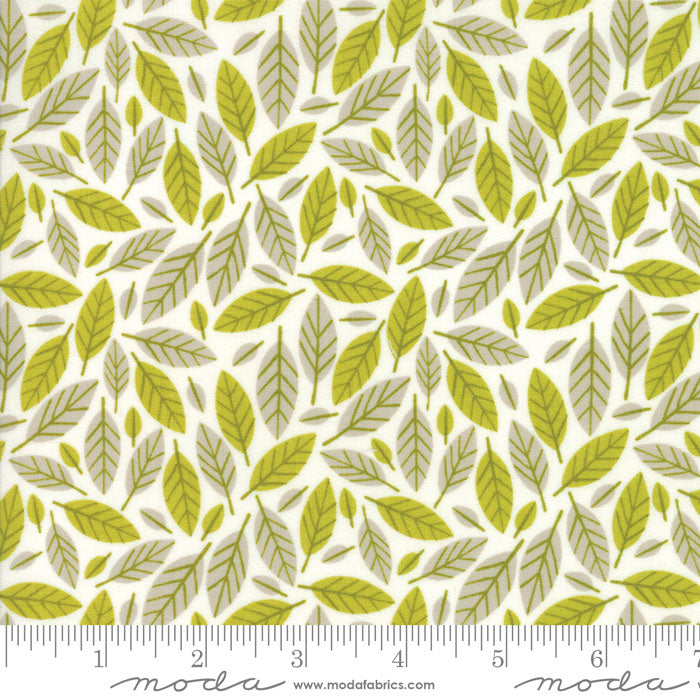 Moda Big Sky 16702 21 F6214 - The Fabric Bee