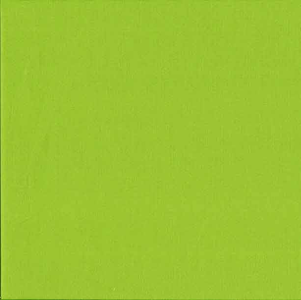 Makower Spectrum Plain Fabric Lime Green G45 F5572 - The Fabric Bee