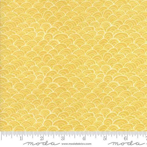 Moda Midnight Garden 36025 18 F6217 - The Fabric Bee