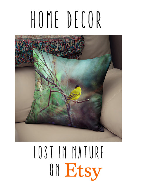 Lost in Nature Decor on Etsy