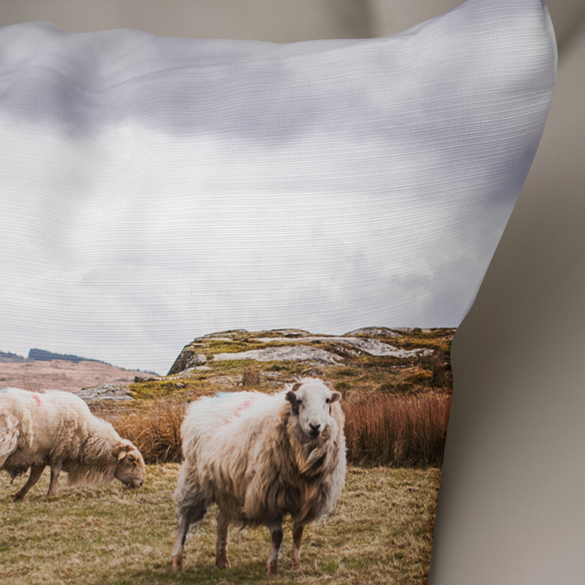 Sheep in Wales Decorative Throw Pillow - 5 Sizes