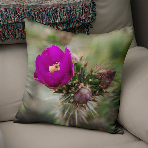 Hedgehog Cactus Throw Pillow Cover- 5 Sizes