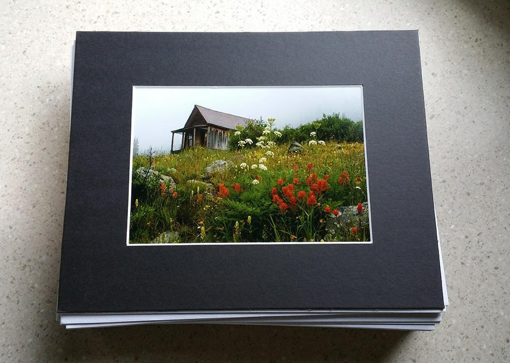 Any 5x7 or 8x10 Print Matted in Black Mat Board Lost Kat Photography
